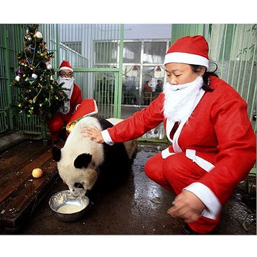 Chinese vocabulary word list-Christmas and New Years
