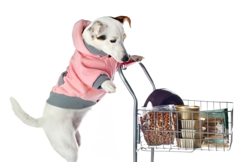esl-shopping-role-play
