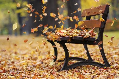 esl-autumn-activities
