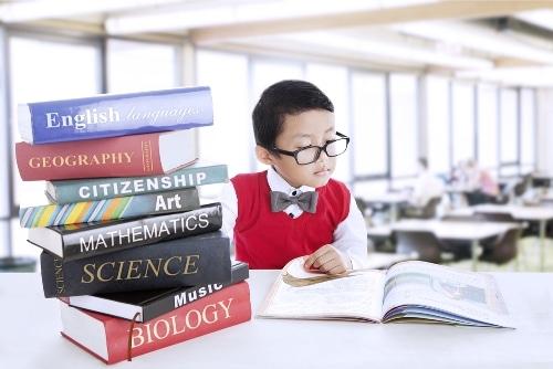 bilingual education in indonesia
