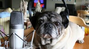 ingilizce-podcast