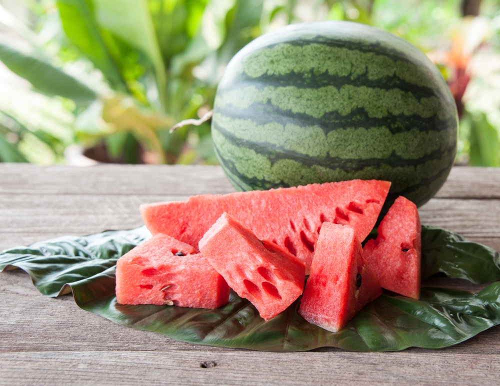 fourth july picnic english vocabulary american food watermelon