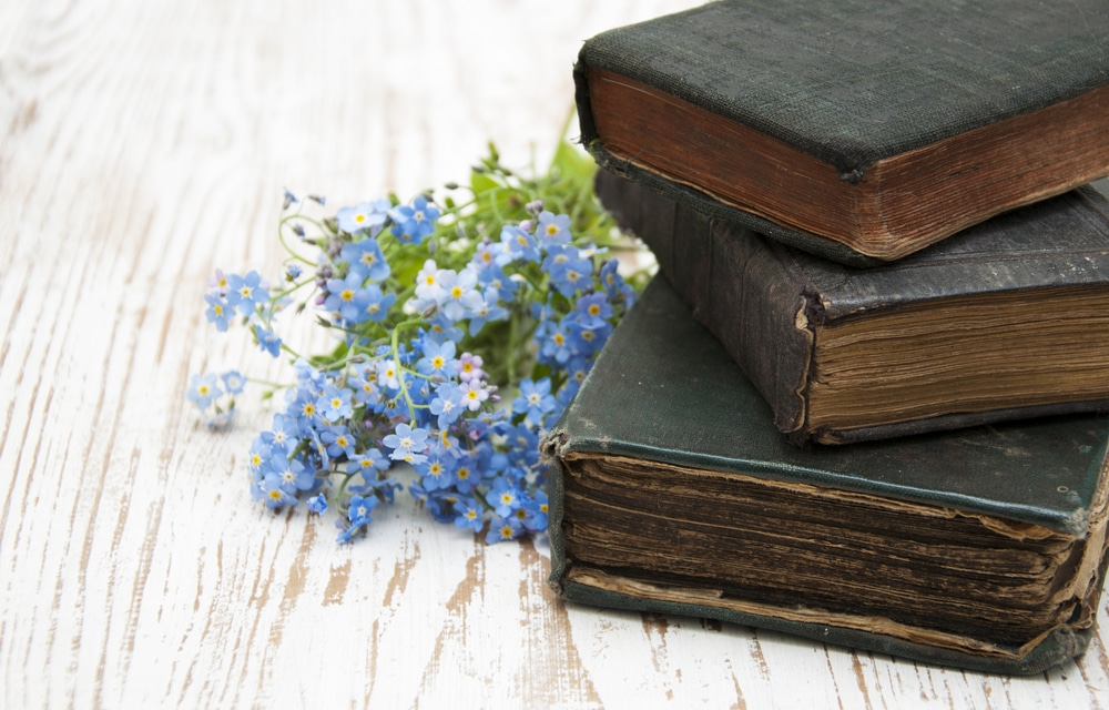 proverbs for essay writing I am a teacher, lecturer cum private tutor, and freelance writer for your thesis, essay or assignment i like writing blog, and novel in my free time.