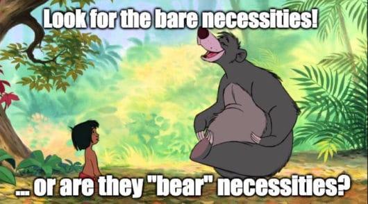 bare-necessities-530x294