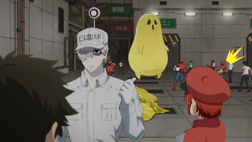 learn japanese anime