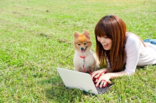 japanese-online-course