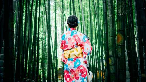 where can i meet japanese friends online