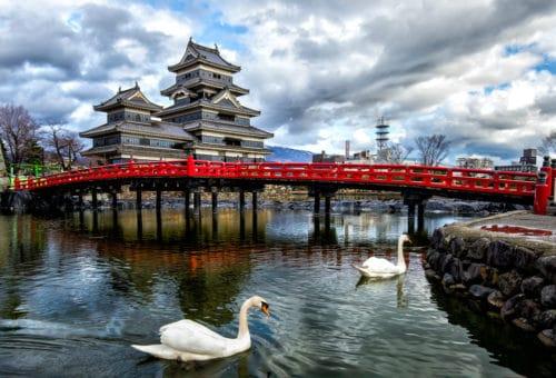 learn-japanese-in-japan