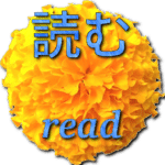 learn-japanese-reading-2