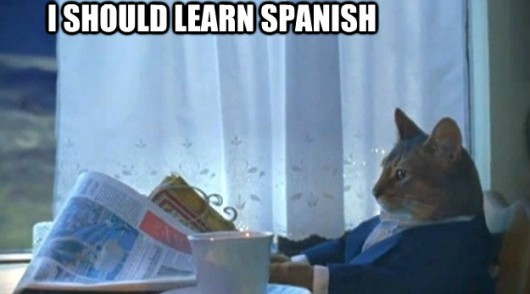 learn spanish vocabulary reddit memes