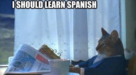learn spanish vocabulary reddit memes