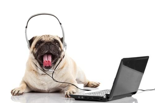 tips online spanish language exchange