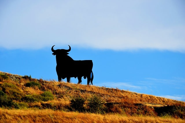 Guay! 12 Popular Spanish Slang Phrases That Aren't Bull