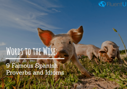 Words to the Wise: 9 Famous Spanish Proverbs and Idioms