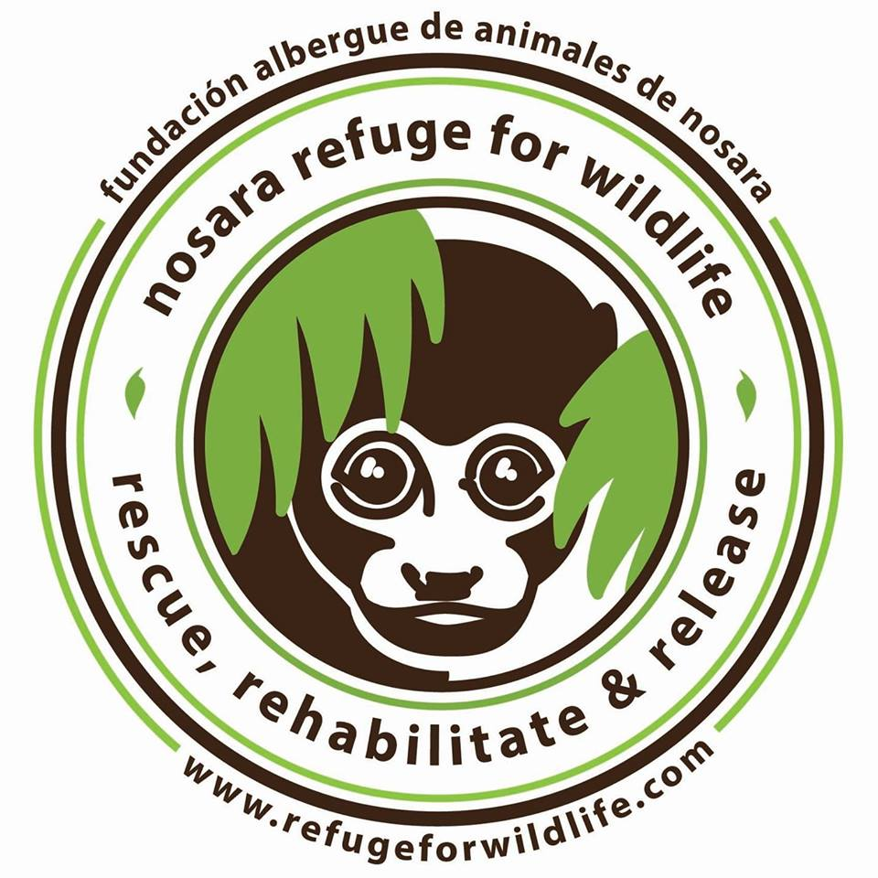 wildlife volunteer opportunities in costa rica