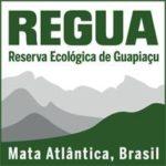 gap-year-brazil