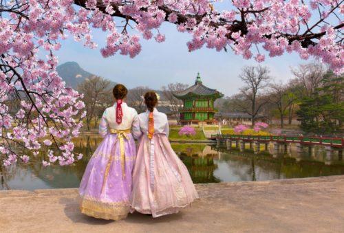 make friends in korea