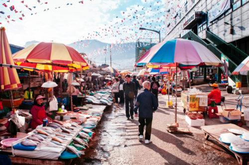 work and travel korea