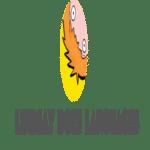 learn-language-blog-4